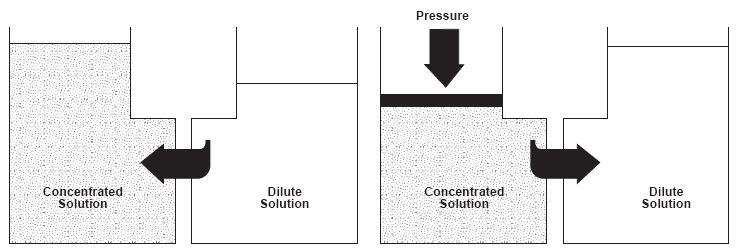 ph affects osmosis High ph - high temperature wastewater  effect of ph on silica rejection through a reverse osmosis membrane figure 3 effect of ph on silica solubility.